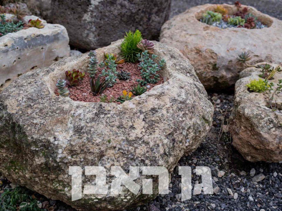שוקת חצובה בסלע מקומי