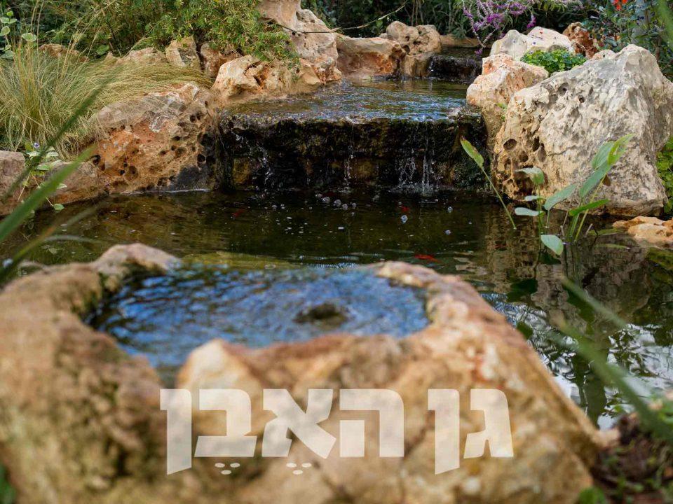 נביעת מים מסלע מקומי