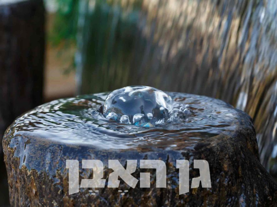 אלמנט מים
