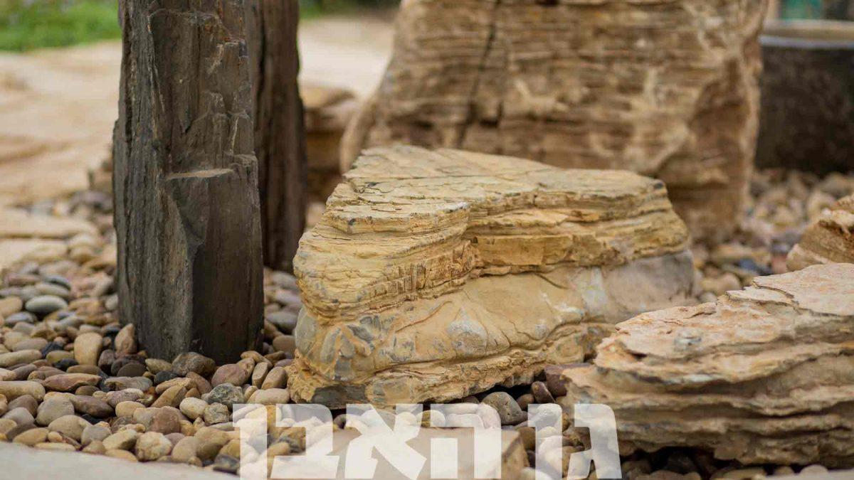 סלעים מגוונים