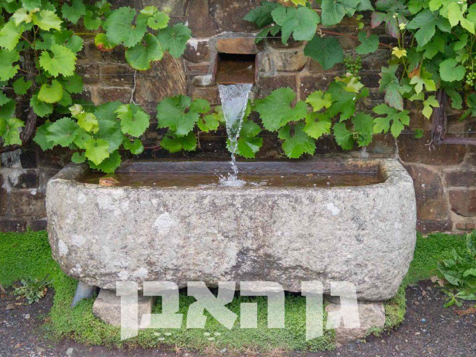 שוקת אבן למים
