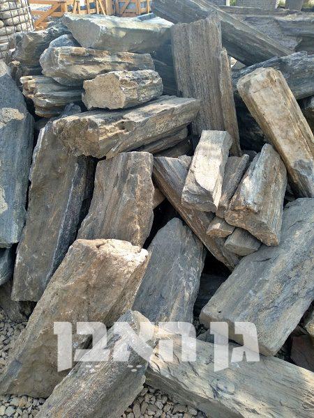 סלעי מאובנים
