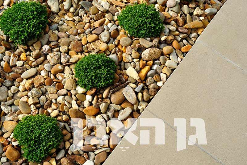 shutterstock_305030537